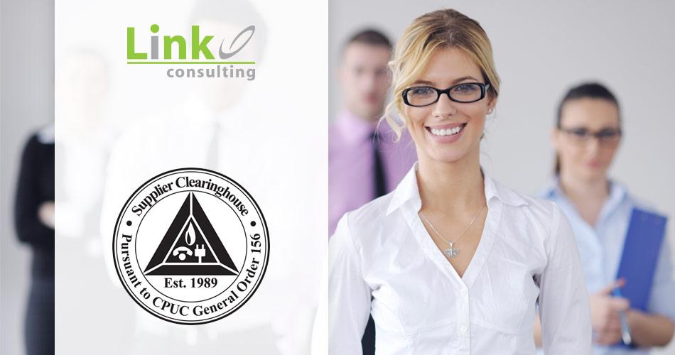 link-2020-supplier